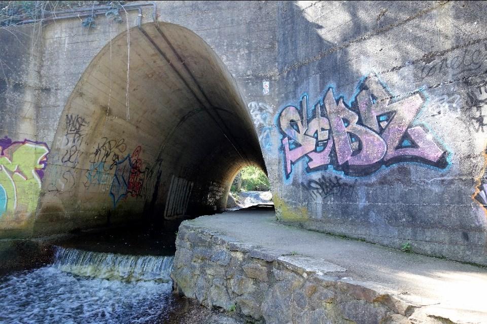 Tunnel cox — img 1