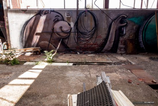 Urban Exploring Metro Meats — Awesome Adelaide
