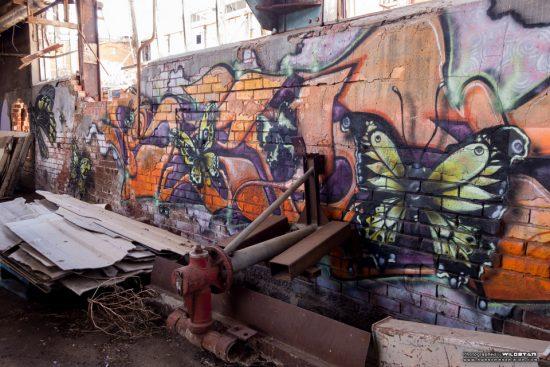 Urban Exploring Metro Meats — Awesome Adelaide